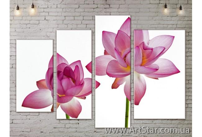 Модульные Картины, Цветы, Art. FLOW777306