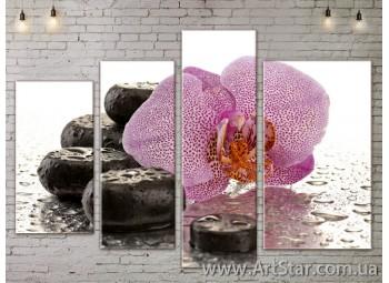 Модульные Картины, Цветы, Art. FLOW777328