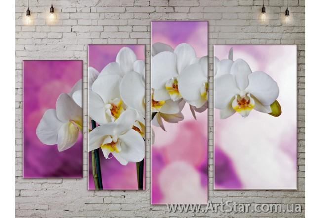 Модульные Картины, Цветы, Art. FLOW777334