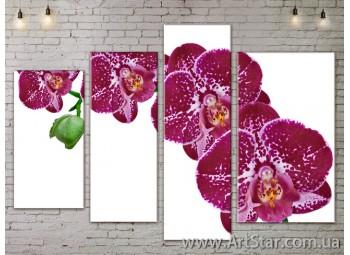 Модульные Картины, Цветы, Art. FLOW777336