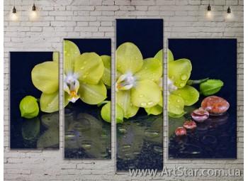 Модульные Картины, Цветы, Art. FLOW777400