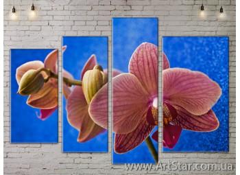 Модульные Картины, Цветы, Art. FLOW777402