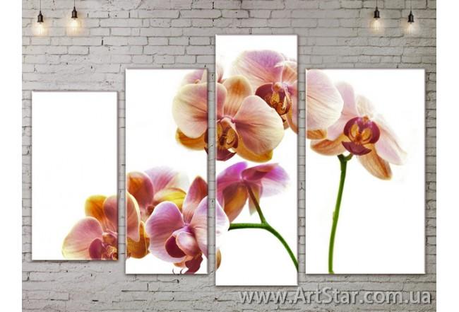Модульные Картины, Цветы, Art. FLOW777412