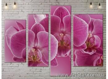 Модульные Картины, Цветы, Art. FLOW777414