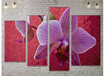 Модульные Картины, Цветы, Art. FLOW777432