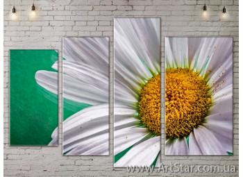 Модульные Картины, Цветы, Art. FLOW777474