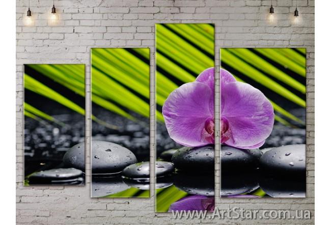 Модульные Картины, Цветы, Art. FLOW777480