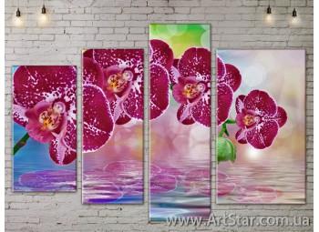 Модульные Картины, Цветы, Art. FLOW777504