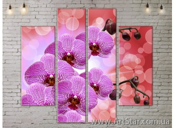 Модульные Картины, Цветы, Art. FLOW777534