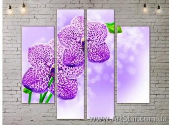 Модульные Картины, Цветы, Art. FLOW777568