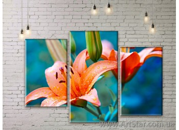 Модульные Картины Цветы, Art. FLWM0015