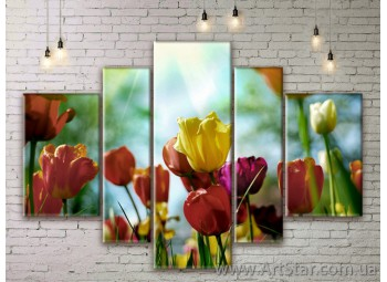 Модульные Картины Цветы, Art. FLWM0025