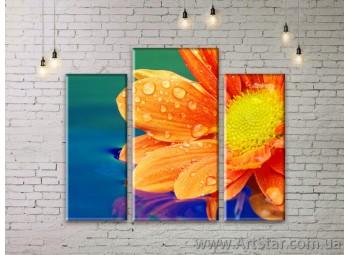 Модульные Картины Цветы, Art. FLWM0055