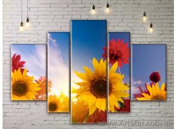 Модульные Картины Цветы, Art. FLWM0067