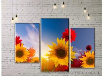 Модульные Картины Цветы, Art. FLWM0069