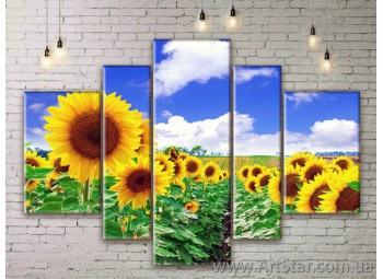 Модульные Картины Цветы, Art. FLWM0079