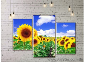 Модульные Картины Цветы, Art. FLWM0081