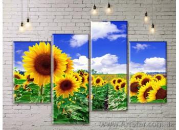 Модульные Картины Цветы, Art. FLWM0083