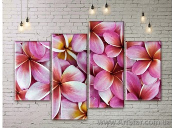Модульные Картины Цветы, Art. FLWM0095