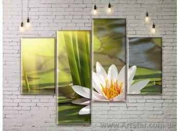 Модульные Картины Цветы, Art. FLWM0107