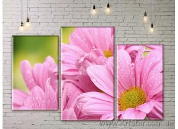 Модульные Картины Цветы, Art. FLWM0111