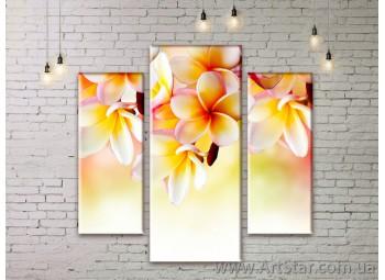 Модульные Картины Цветы, Art. FLWM0139