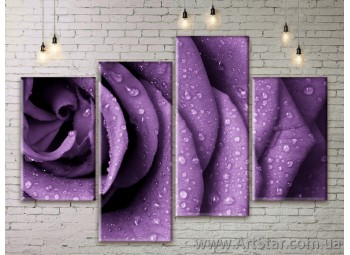 Модульные Картины Цветы, Art. FLWM0163