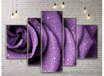 Модульные Картины Цветы, Art. FLWM0165