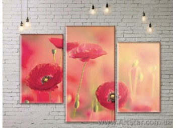 Модульные Картины Цветы, Art. FLWM0173