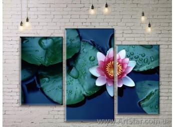 Модульные Картины Цветы, Art. FLWM0203