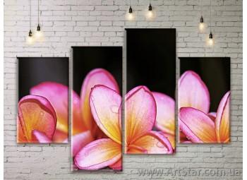Модульные Картины Цветы, Art. FLWM0205