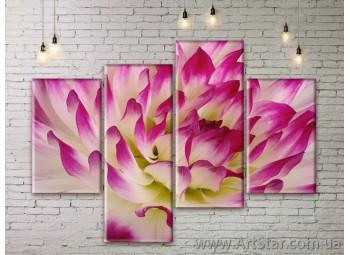 Модульные Картины Цветы, Art. FLWM0229