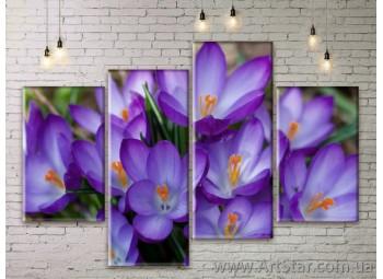 Модульные Картины Цветы, Art. FLWM0235