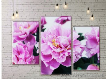 Модульные Картины Цветы, Art. FLWM0245