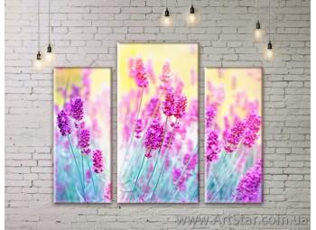 Модульные Картины Цветы, Art. FLWM0265