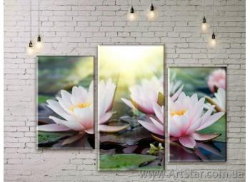Модульные Картины Цветы, Art. FLWM0275