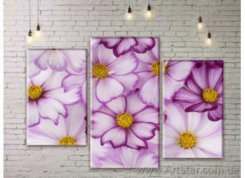 Модульные Картины Цветы, Art. FLWM0281