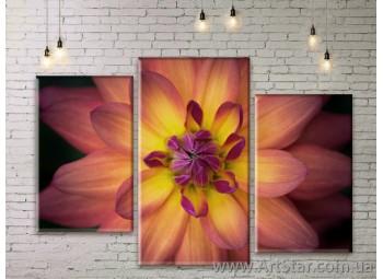 Модульные Картины Цветы, Art. FLWM0293
