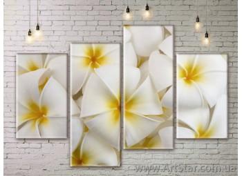 Модульные Картины Цветы, Art. FLWM0295