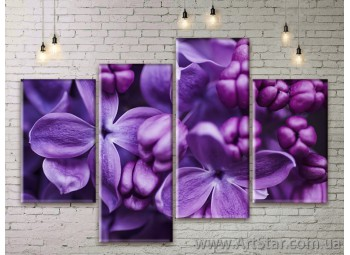 Модульные Картины Цветы, Art. FLWM0301