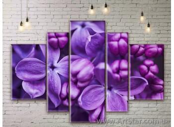 Модульные Картины Цветы, Art. FLWM0303