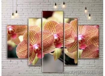 Модульные Картины Цветы, Art. FLWM0309