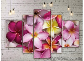 Модульные Картины Цветы, Art. FLWM0345
