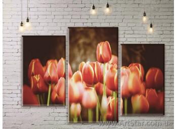 Модульные Картины Цветы, Art. FLWM0353