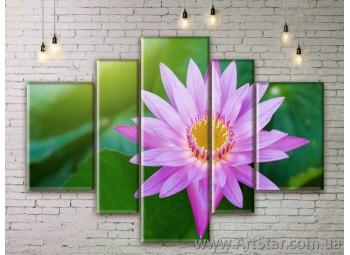 Модульные Картины Цветы, Art. FLWM0357