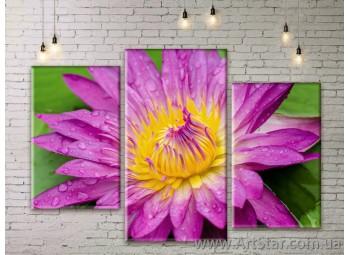 Модульные Картины Цветы, Art. FLWM0393