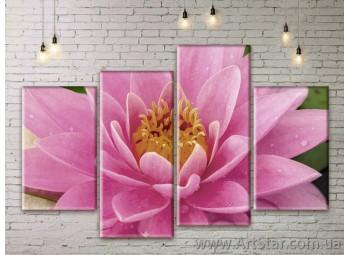 Модульные Картины Цветы, Art. FLWM0395