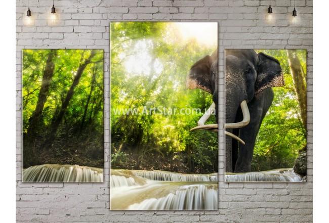 Модульные картины пейзажи, Art. NATA777049