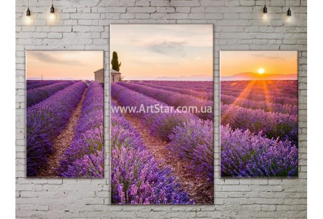 Модульные картины пейзажи, Art. NATA777093