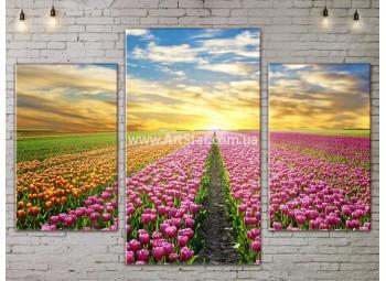 Модульные картины пейзажи, Art. NATA777097